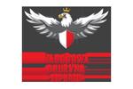 NARODOWA-DRUZYNA-ESPORTU_-pl.png